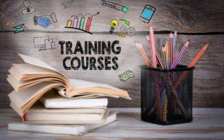 一層の人材活用のためにも、これからは管理職層の研修・育成が必須!